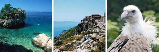 Fun Facts About Yoga & Sailing Retreats in Croatia - Fun fact No. 11